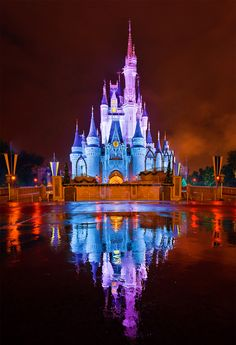 Cinderella Castle rain-reflection #Disney  -Tom Bricker -    www.MagicalAdventuresTravel.com