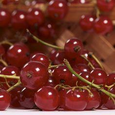 Cute Sweet Fruit #iPad #Air #Wallpaper