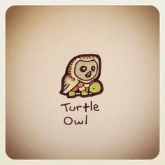 Turtle Owl #turtleadayjuly - @turtlewayne- #webstagram