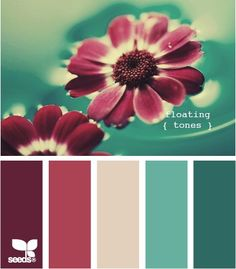 teal and burgundy!! LOVE!