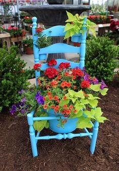 Cut center out of chair seat so pot can rest on the frame. Spray paint chair and pot. Plant large pot (we used a 12-inch clay pot plus smaller potted plants for the ladder part of the chair) filled with yellow sweet potato vine, red verbena, Tango Neon purple geranium, Calibrachoa Dreamsickle, Supertunia Royal Velvet