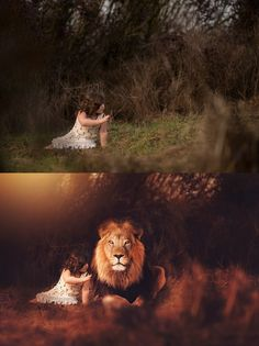 I'm just loving our new lion composite release! Create fun lion composites using real lion overlays in Photoshop.   Image is courtesy of Stephanie Ratto Photography! <3
