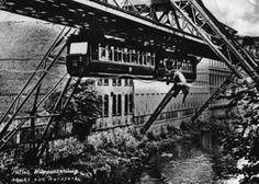 Heute aus der Reihe Kuriositäten: Tuffi - der Elefant, der 1950 aus der Wuppertaler Schwebebahn sprang und die einzigartige Bild-Konstruktion der BILD Zeitung