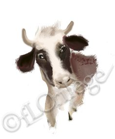 cow vache de tête