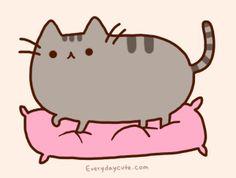Esta es la razón de porque los gatos amasan a sus dueños - Imagen 1