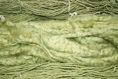 pale green dye from mullein; harvest leaves second year.  general rule for dyeing with natural materials is 1:1 for fresh material: weight of fiber or 2:1 for dry material: weight of fiber. The best way to achieve this greening effect is to use a copper cauldron and let the dyed fiber cool overnight in the copper cauldron. It is recommended to reuse the water in the copper cauldron for the next bath so that there is no contaminated water disposal issues.