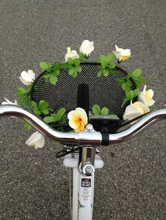 Image de flowers, bike, and tumblr
