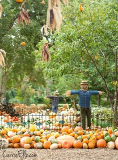Pumpkin Village, Autumn at the Arboretum, Dallas Arboretum, Fall, Pumpkin Patch, #ArborAutumn