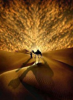 Wow! Camel & man in the desert.    it is good to have a partner