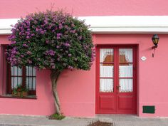 Casa de Retalhos: Portas