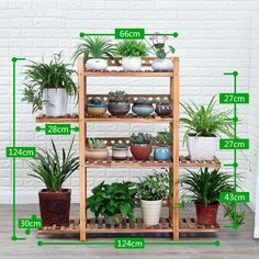 12 Unique and Decorative Plant Stands Indoor Vertical Garden Diy, Indoor Plants, Wood Plant Stand, Decor, Plant Shelves, Garden Decor, Plant Stand Indoor, Garden Tool Storage, Plant Decor