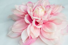 Large Pink and Ivory Toned Silk Dahlia  over 5 by simplyserra