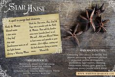 ***Star Anise*** botanical, apothecary Book of shadows. Magic Herbs, Herbal Magic, Witch Herbs, Eclectic Witch, Healing Herbs, Healing Spells, Witchcraft Spells, Wiccan Witch, Medicinal Herbs