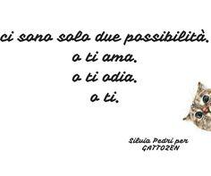 #gatto #zen #saggio #crescitapersonale #spiritualità #love #amore #felicità #happy #life #vita #feelsafe #testesso  #libertà #successo #creatività #gattozen #coppia