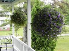 Artificial Hanging Plant Usage on Front  Porches