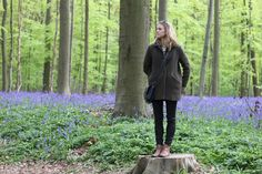 travel europe photo journal - bluebell forest