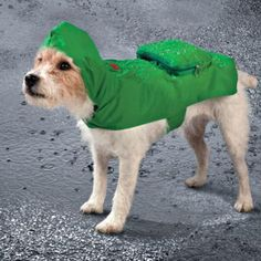 Raincoats For Women The North Face Info: 6370019307 Black Raincoat, Dog Raincoat, Raincoat Jacket, Go Dog Go, Waterproof Dog Coats, Rain Jacket Women, Raincoats For Women, Medium Dogs, Dog Accessories