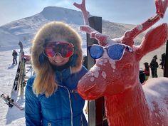 The best skiing in the French Alps? Portes Du Soleil....  https://familyskitrips.com/switzerland/portes-du-soleil/