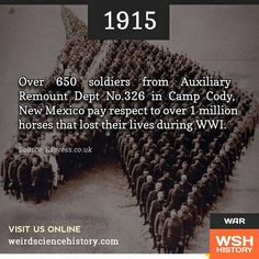 The touching shot shows some 650 soldiers standing in a formation which from a bird's eye view perfectly resembles a horses head, neck and a noseband.  It is believed the picture was taken by officers of the Auxiliary Remount Dept No.326 in Camp Cody, New Mexico in 1915. Around eight million war horses were killed during the conflict while countless mules and donkeys also died.