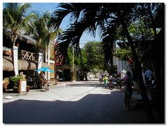 Playa del Carmen,  5th Avenue