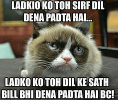 HAHA, TRUE AF! :p Dil Se, Urdu Quotes, Haiku, Humor, Cats, Funny, Animals, Cheer, Gatos