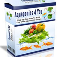 Ten Times More Plants In Half The Time! - aquaponics #hydroponics#aquaponics#aquaponics #system#aquaponics #diy