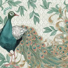 Nicole Tamarin: Pretty Peacocks I Keilrahmen-Bild 50x50 Leinwand Vögel  Pfau