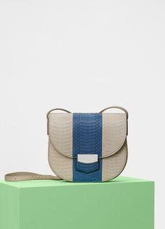 Small Trotteur Shoulder Bag in Watersnake - Céline