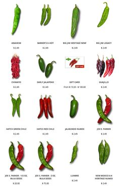 The famous Hatch Green Chile, Poblano, Big Jim and other green and red chiles for great Hatch chile stews, chile rellenos, and so much more. Coconut Oil Weight Loss, Healthy Weight Loss, Chile Picante, Types Of Peppers, Hatch Chili, Meal Prep Guide, Pepper Seeds, How To Eat Less, Stuffed Hot Peppers