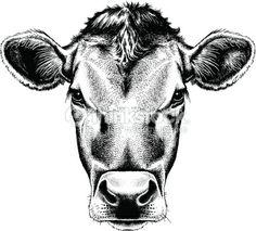 Vector Retrato De Una Vaca Arte Vectorial 454915571