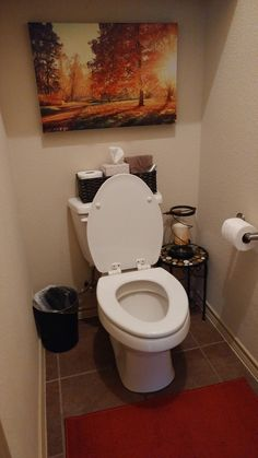 Why not make that little toilet room look nice?