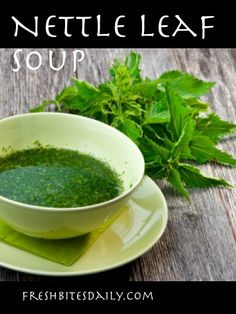 A springtime nettle soup, full of so much flavor and health, it has changed our lives...