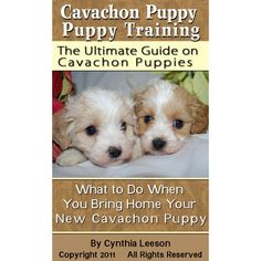 Cavachon Puppy Training: The Ultimate Guide on Cavachon Puppies, What to Do When You Bring Home Your New Cavachon Puppy - Kindle edition by Cynthia Leeson. Crafts, Hobbies & Home Kindle eBooks @ Amazon.com.
