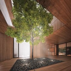 Holes House by Michal Nowak - in my dream house, I'd like a tree in it. <3