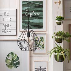 @kika.at • Instagram-Fotos und -Videos Planter Pots, Videos, Instagram, Green And Brown, Plants