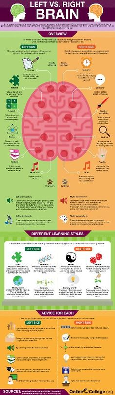#Infographic #leftbrainrightbrain Please include attribution to OnlineCollege.org with this graphic.