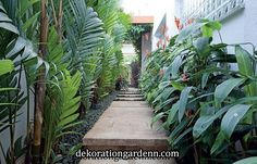 37 Ideas For Backyard Tropical Oasis Decks Tropical Garden Design, Tropical Backyard, Tropical Landscaping, Backyard Landscaping, Tropical Gardens, Tropical Plants, Side Garden, Garden Paths, Back Gardens