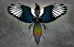 MAGPIE OTHERWORLD ※ Nordic Bird Viking Celtic Color Sparkle Shine Ancient Magic Crow Raven Lunula Solar Wheel Art by SigiDawn on Etsy https://www.etsy.com/listing/206123540/magpie-otherworld-nordic-bird-viking