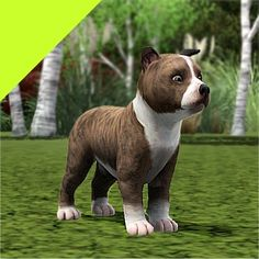 Improved Puppies - Pitbull by LittleV - The Exchange - Community - The Sims 3