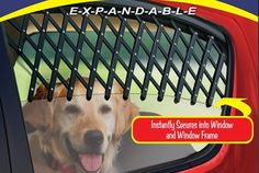 Car Window Pet Gate Keeps Your Fresh-Air-Loving Dog Safe    ---  from InventorSpot.com --- for the coolest new products and wackiest inventions.