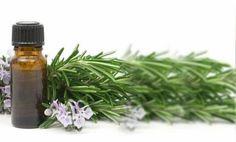 Algunas opciones de preparados naturales para combatir las pestes que atacan a nuestra huerta o jardín