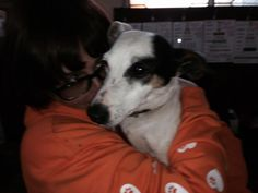 #pawscrossed today for Dennis home check too  #luckypants pic.twitter.com/yhHv6Fxbly