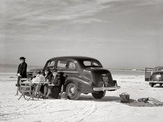 Sarasota, Florida, ca. 1941 - Guests of the Sarasota trailer park picnicking at the beach. Sarasota Florida, Old Florida, Vintage Florida, Florida Beaches, Colorized History, Colorized Photos, Vintage Photographs, Vintage Photos, Shorpy Historical Photos