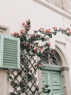 -Santy- flores na janela 736 X 981 Cities Wallpa Spring Aesthetic, Flower Aesthetic, Aesthetic Photo, Travel Aesthetic, Aesthetic Pictures, Nature Aesthetic, Aesthetic Collage, Collage Mural, Photo Wall Collage