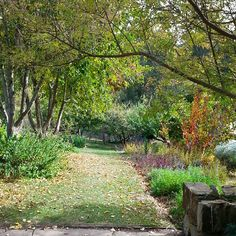 Afternoon walk thru the gardens of St Erth.  #TheDiggersClub  #StErth  #AutumnGarden  #AutumnFestival  #WarmAutumnDay  #iwantonelikethis  #OrganicLiving  #Organic  #cottagegardens  #AlkalineByDesign #AlkalineGarden  #CountryVictoria #NoUglyGardens