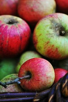 ☼ Not the 'pretty' apples you would buy in the store, but they taste so much better