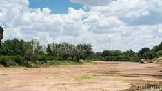 Stock Video of A slow tilt up timelapse of a dry river bed with large trees and green vegetation at the start of summer with large cumulous clouds forming. at Adobe Stock Dry River, Tilt, Stock Video, Stock Footage, Adobe, Trees, African, Clouds, Landscape