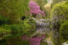 ITALY-Il Giardino di Ninfa - Turismo Roma- tours of beautiful garden Best in April/May Beautiful Landscapes, Beautiful Gardens, Rome, Parks, Garden Park, Garden Ponds, Italian Garden, Regions Of Italy, Le Havre