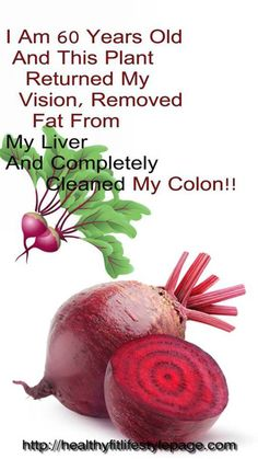I Am 60 Years Old And This Plant Returned My Vision, Removed Fat From My Liver And Completely Cleaned My Colon – Healthy Fit Lifestyle Page