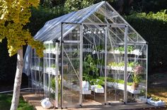 Benefit Of Greenhouse For Hydroponic | Learning and Creating a simple ...